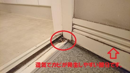 浴室のドアにはえてしまった黒カビ